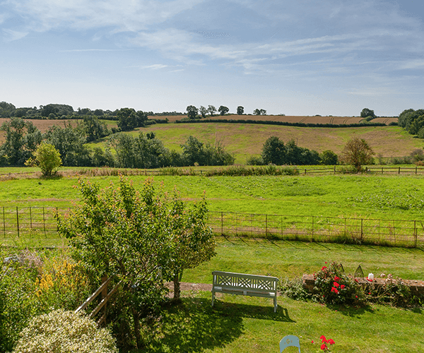 Estate Agent Photo - Rear Garden View
